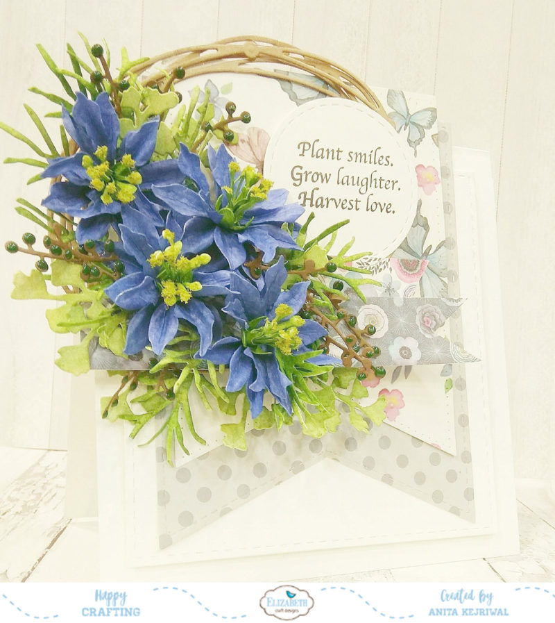 love in a mist planting instructions